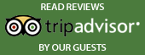 Little Italy Burlington's TripAdvisor Profile